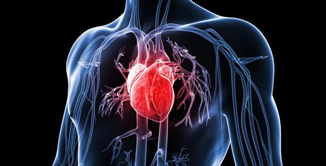 bện tim mạch